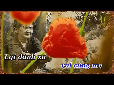 Xuân Này Con Về Mẹ Ở Đâu Karaoke Quang Lê (tone C#)