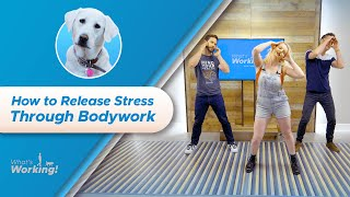 How to Find Stress Relief Through Bodywork