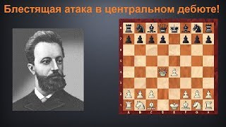 Шахматы. Блестящая партия Михаила Чигорина в центральном дебюте!