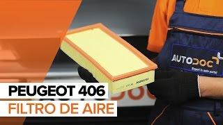 Cómo cambiar Filtro de aire en PEUGEOT 406 INSTRUCCIÓN | AUTODOC