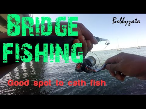 Fishing Under Bridge || Bridge Fishing Basics || Captain Cook Bridge Fishing || Bream Flathead Fish