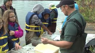 Elementary school students gather rusty crayfish data for Michigan State researcher