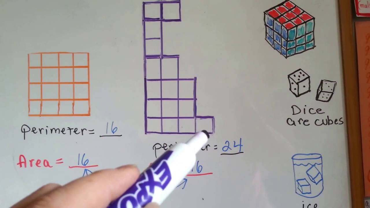 Same perimeter different area worksheets 3rd grade
