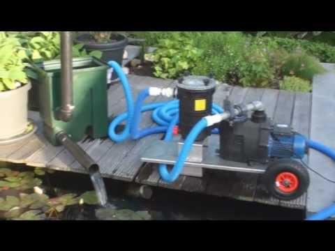 Teichreinigung ritzer doovi for Fischteich algen entfernen