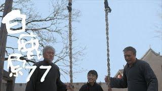 白鹿原 | White Deer 77(大結局)【DVD版】(張嘉譯、秦海璐、何冰等主演)