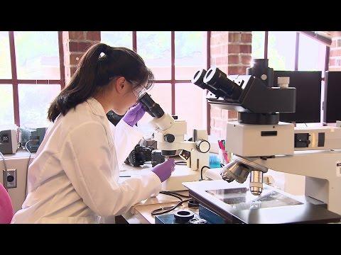 Explore UW Engineering - Materials Science & Engineering