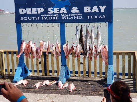 Deep Sea Fishing -  South Padre Island