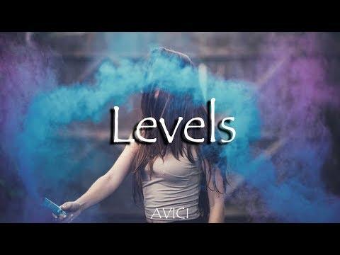 Avicii - Levels (Slim Tim's Remix)