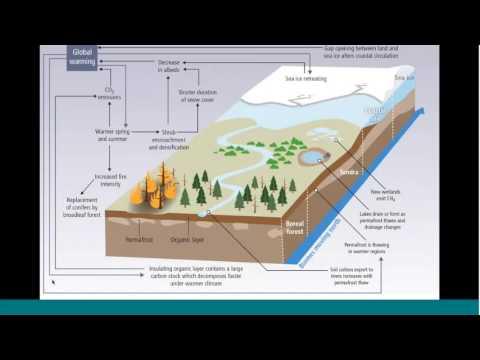 NASA's Arctic Boreal Vulnerability Experiment ABOVE - Goetz