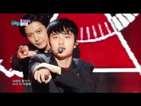 EXO (엑소) - TEMPO (템포) Stage Mix 무대모음 교차�