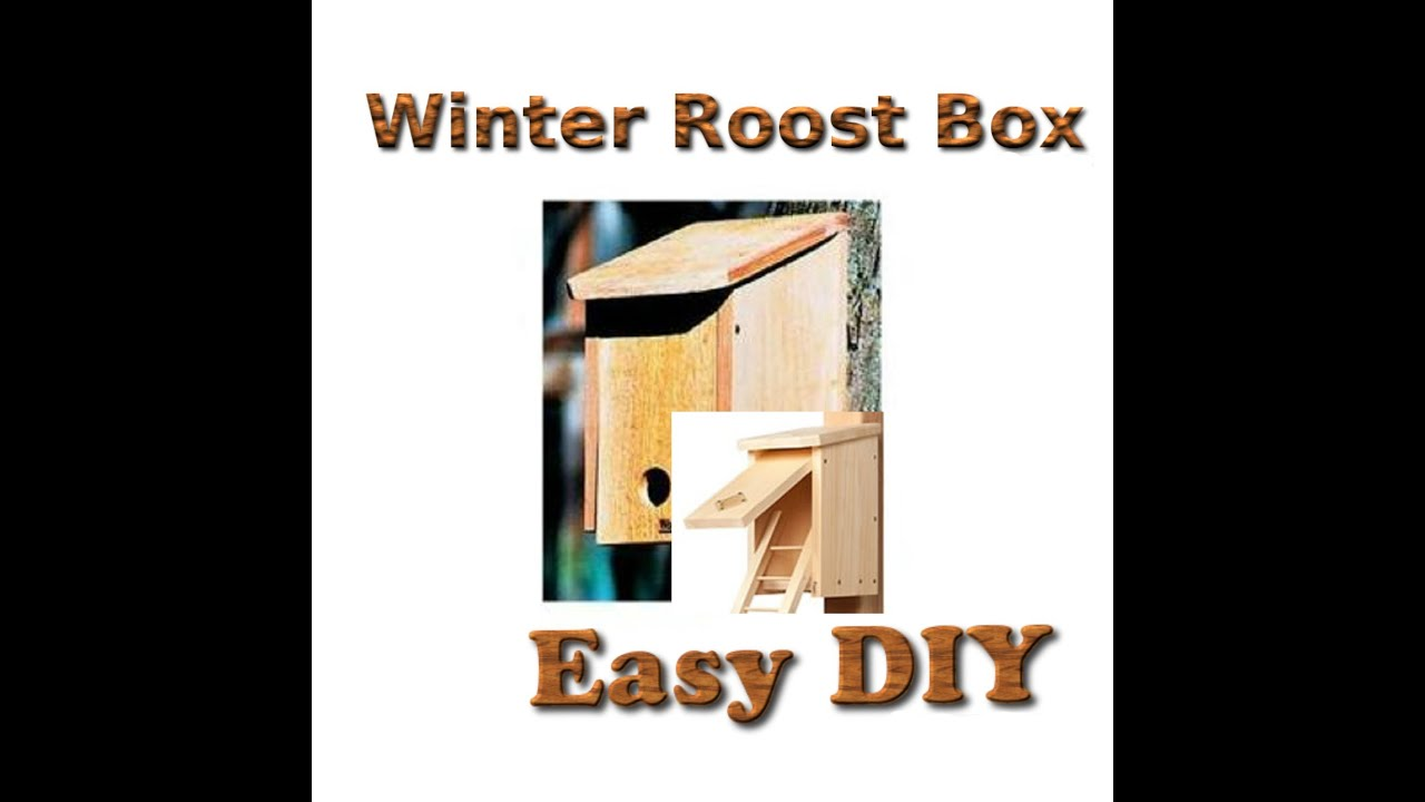 winter roost box diy youtube