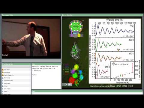 """Dr. Greg Engel - """"Exploring and exploiting the robustness of coherent energy transfer"""""""