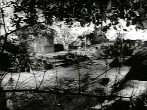 Phagun(1958)-Teer Yeh Chhupke Chalaaya kisne (Asha Bhonsle)