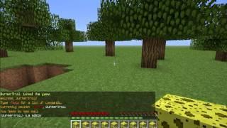 Minecraft'ta Yapılmaması Gereken 10 Şey ! (BurnerTroll)