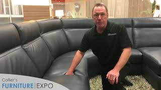 Natuzzi Editions C007 Lapo Product Review | Collier's Furniture Expo