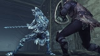 Dark Souls II (PC) bone fist + ice rapier