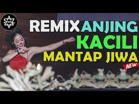 DJ VIRAL ANJING KACILI SUPER BASS MANTAP JIWA [ PALING ENAK SEDUNIA ] BY - BANGTRAP - DJ SKYZO TRAP