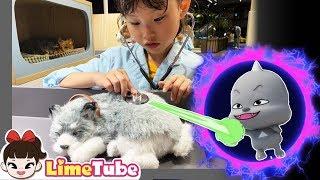 라임이가 구해 준 강아지! 꿀잼 타이니 키즈파크 Save the Puppy play indoor playground for kids | LimeTube toy review