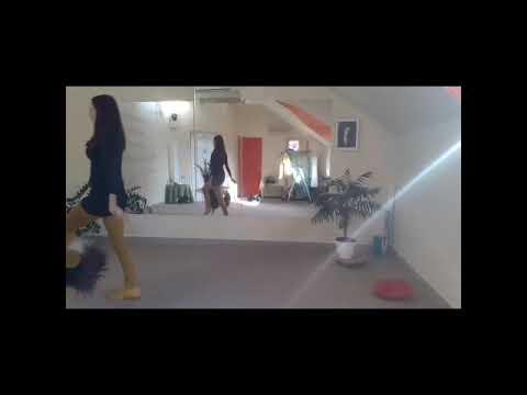 Dog Dancing Oktatás - Hatvan