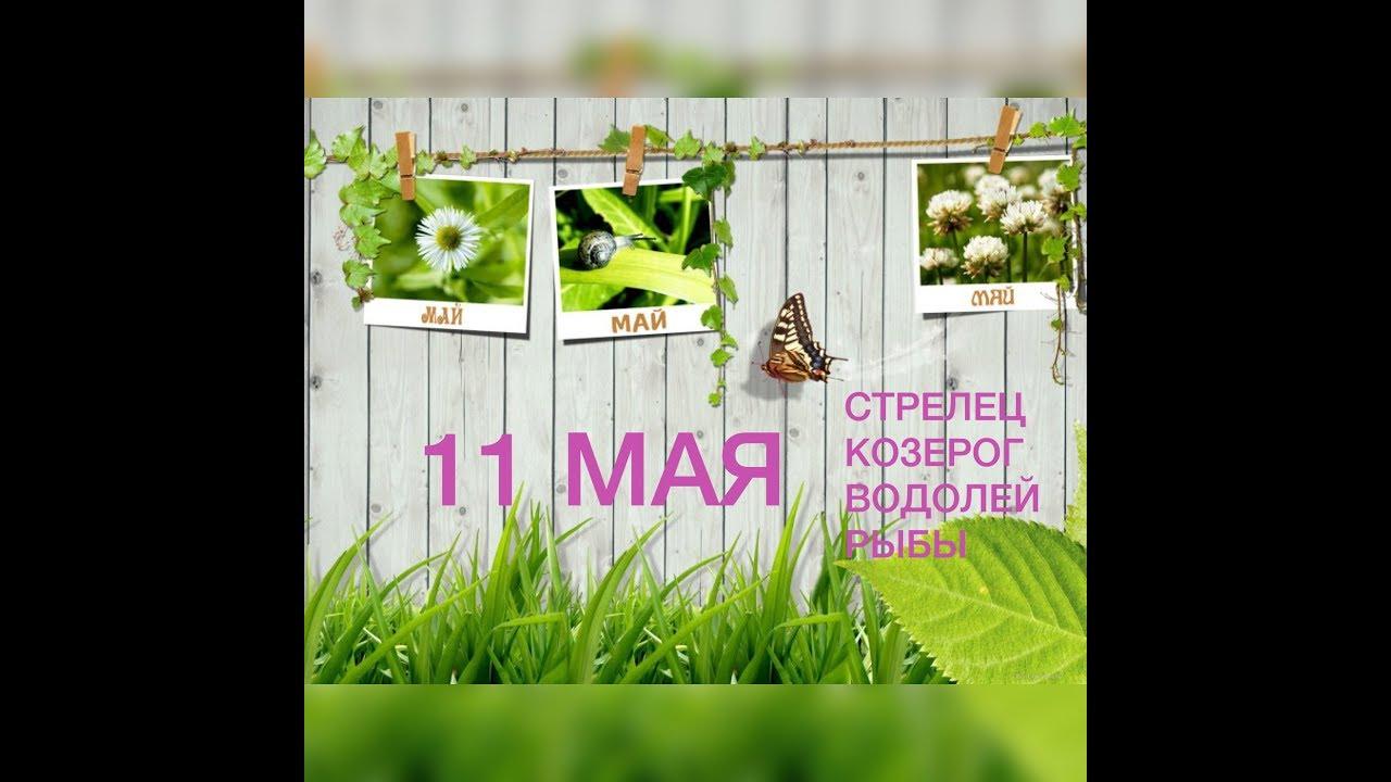 КАРТА ДНЯ 11 мая 2018 года (Стрелец, Козерог, Водолей, Рыбы)