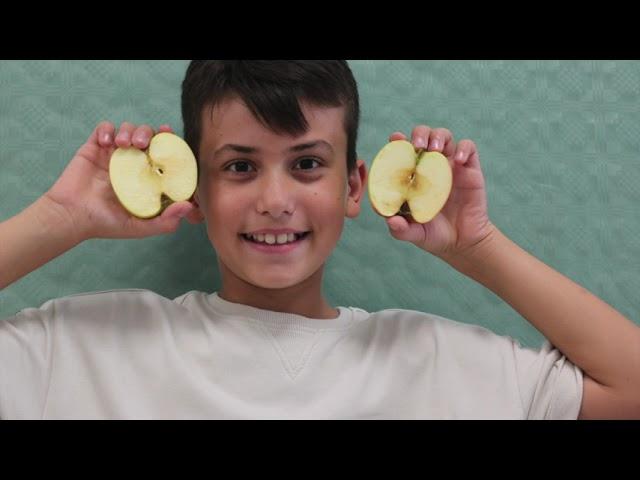 Guanta Vitamine - Rhythmusprojekt der 1a Klasse