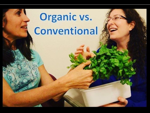 Organic vs. Conventional (Hybrid vs. GMO) - A Conversation with Raw Vegan Fruitarians