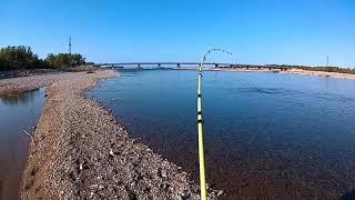 Великолепная рыбалка! На это стоит посмотреть. Кижуч.! Рыбалка на Колыме.Река Армань