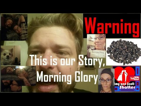 This is our Story, Morning Glory (Our Denver Days / product review)