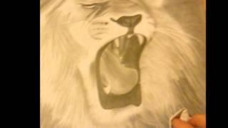 Oroszlán rajz videó