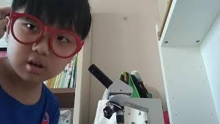 현미경 다루는 방법 1