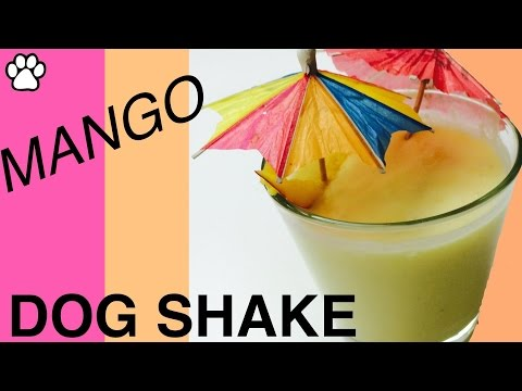 how-to-make-tropical-mango-coconut-milk-dog-shake-smoothie-for-your-dog---by-cooking-for-dogs