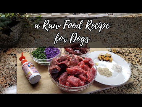 Raw Dog Food Recipe: Making Raw Food For My German Shepherd Dog