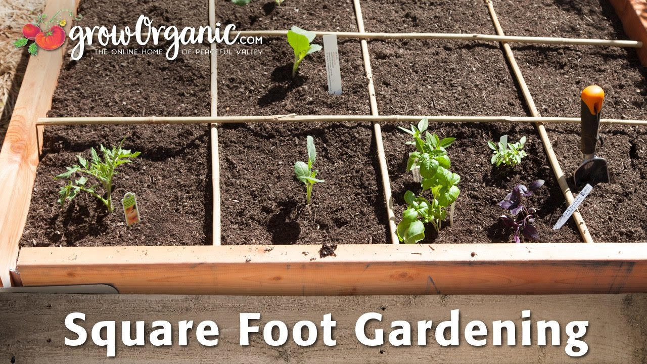Using a Square Foot Garden to Maximize Space YouTube