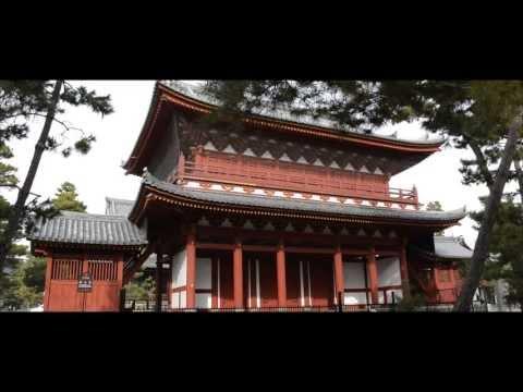 The Kyoto Network - Myoshin-ji