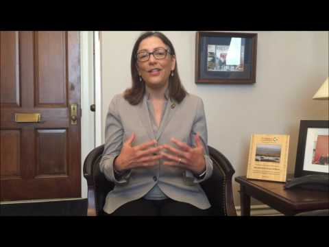 Meet Your New Dem Rep. Suzan DelBene