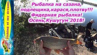 Рыбалка на сазана,подлещика,карася,плотву осенью!Фидерная рыбалка!Кушугум 2018!!!