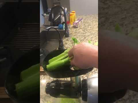 Using the Omega J8006HDS Masticating Juicer