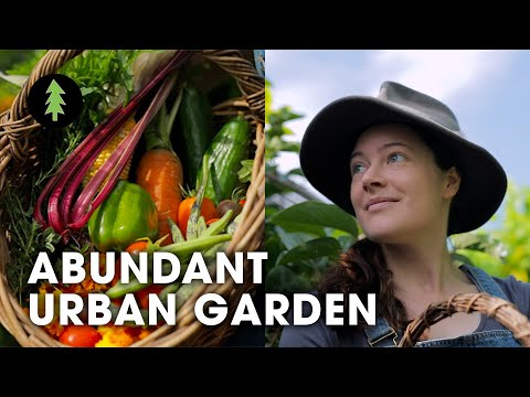 Incredibly Abundant Permaculture Garden In The City | The Plummery