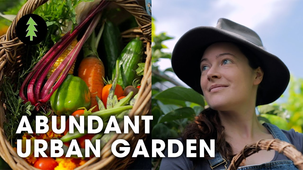 Inspiring Woman Growing a Huge Amount of Food in Her City Permaculture Garden