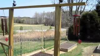 Garden Fence Construction How To Build Deer Groundhog Fencing Raised Bed Square Foot Gardening