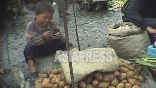 [아시아프레스 북한내부영상11] 생활전선에 뛰어든 북한 아이들