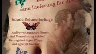 Anja Regitz - Dieses kribbeln im Bauch