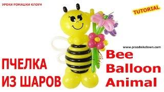 ПЧЁЛКА ИЗ ВОЗДУШНЫХ ШАРОВ своими руками Bee Balloon Animal TUTORIAL