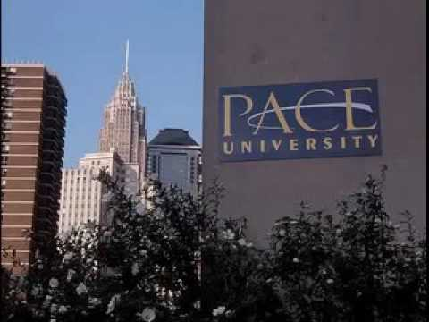 online Education in New York City