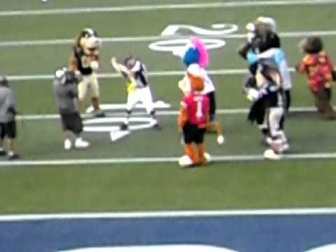 NFL Mascots - Pro Bowl 2011