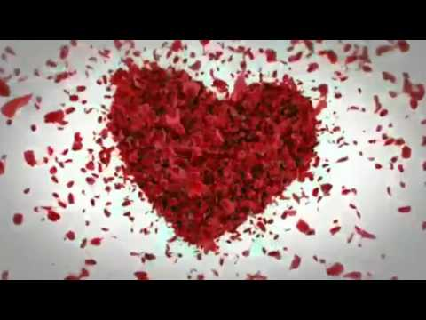 Valentine day, Tuesday, February 14, WhatsApp  video clips download