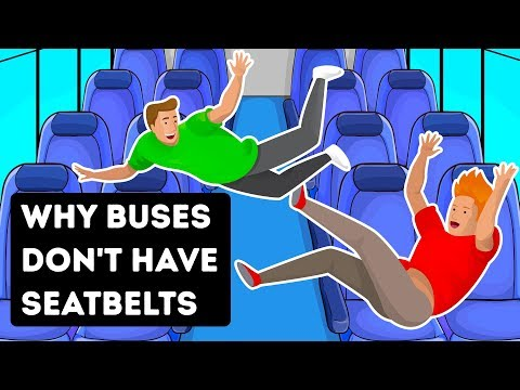 That's Why Buses Don't Have Seatbelts