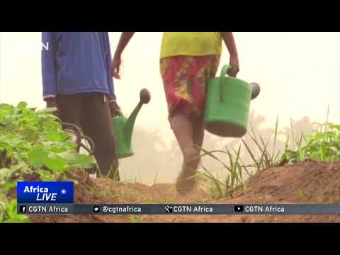 UN agency: 7.7 million people in urgent need of food aid