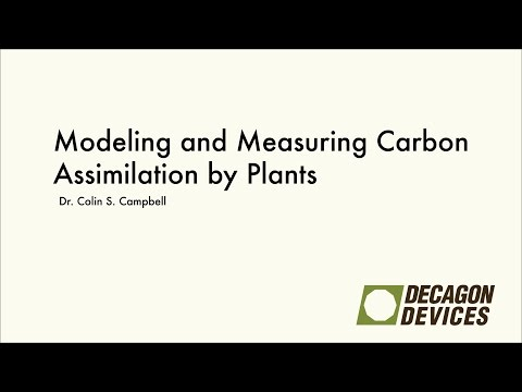 Modeling and Measuring Carbon Assimilation by Plants