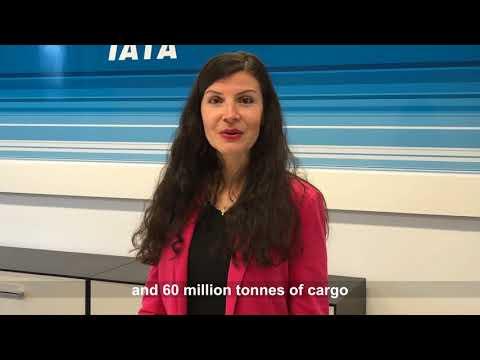 IATA's 73rd Anniversary